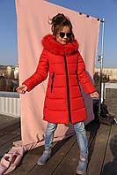 Зимнее детское  пальто с натуральным мехом Викки 2 нью вери (Nui Very)