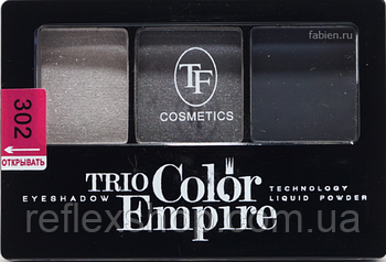 Тени 3 цвета Triumf №302