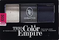 Тени 3 цвета Triumf №303