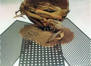 Определение сорной и зерновой примесей. Зараженности вредителями.