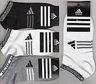 Носки женские спортивные демисезонные х/б Adidas, Турция, короткие, ассорти, 06155