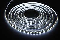 Светодиодная лента SMD 3528 (120 LED/m) IP20 Premium