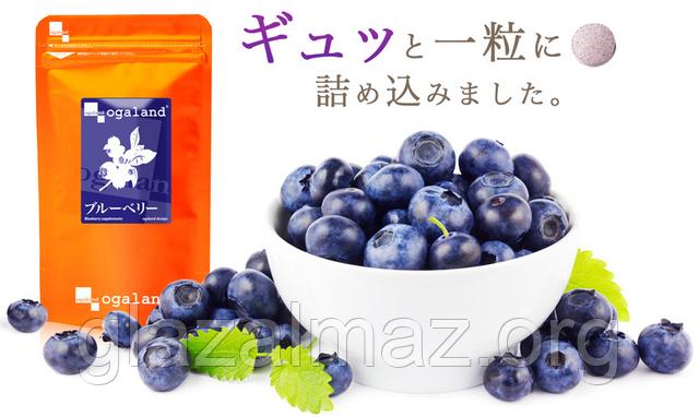 Ogaland Blueberry экстракт черники японский