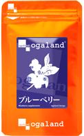 Экстракт черники Blueberry японской компании Ogaland (270 гранул на 90 дней)