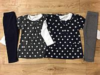 Комплект тройка для девочек F&D 1-5 лет, фото 1