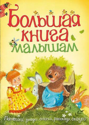 Большая книга малышам  , фото 2