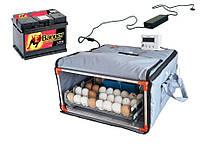 Инкубатор Broody Micro Battery 50
