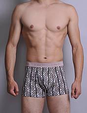 Мужские боксеры C+3 (M - 2XL) (без коробок ), фото 2