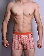 Мужские трусы боксеры C+3 (без коробок ) , фото 2