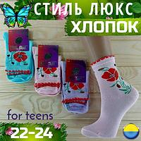 Детские носки демисезонные СТИЛЬ ЛЮКС Украина ассорти 22-24р маки НДД-08280
