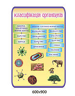 Стенд Классификация организмов (бежевый)