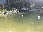 Шар плавающий со светодиодной подсветкой на солнечной батарее AS-SPD-W – белый свет, фото 4