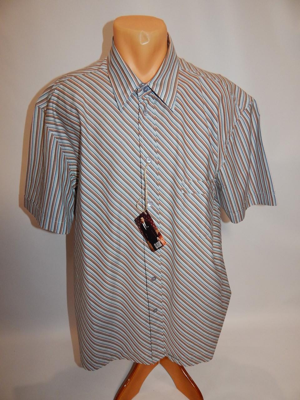 Мужская рубашка с коротким рукавом Ted Baker (083КР) р.52