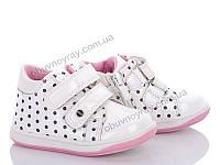 Детская обувь оптом. Осенние ботинки для девочек от фирмы С.ЛУЧ ( рр. 400e038b635d3
