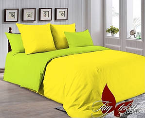 Комплект постельного белья P-0643(0550)