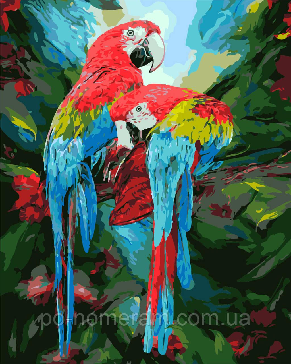 Раскраска для взрослых Парочка попугаев (AS0282) 40 х 50 ...