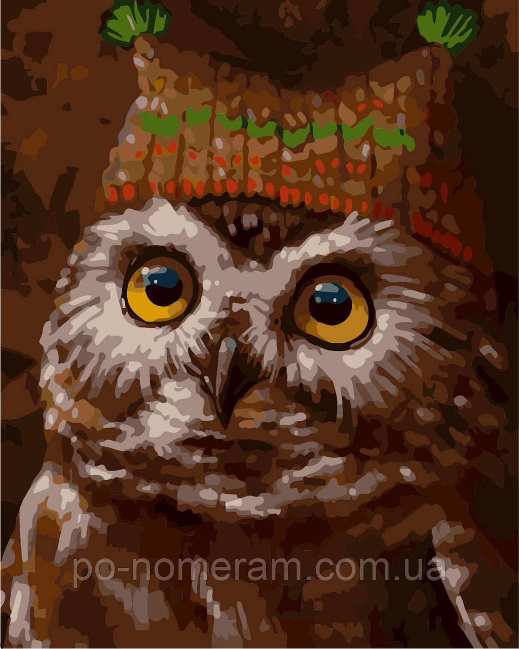 Раскраска для взрослых Сова в шапке (AS0283) 40 х 50 см ...