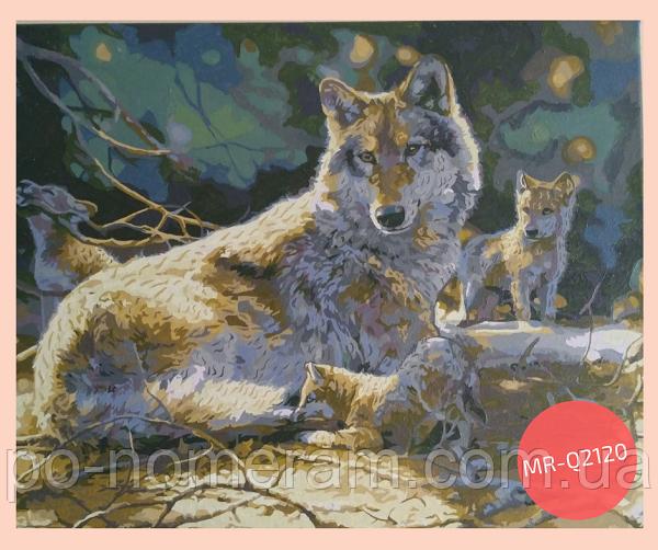 раскраска по цифрам волки