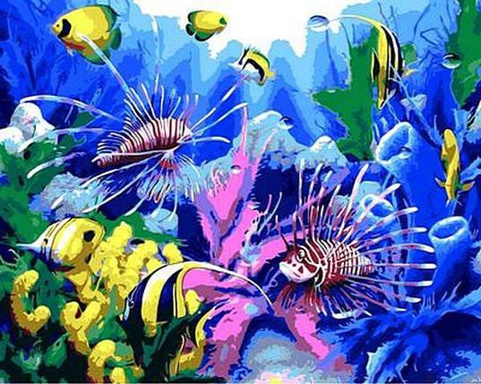 MR-Q616 Набор-раскраска по номерам Тропические рыбки, фото 2
