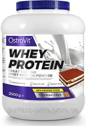 Сироватковий протеїн OstroVit Whey Protein 2000g, фото 2