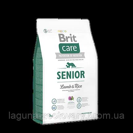 Brit Care Senior Lamb & Rice 3 kg (д/пожилых всех пород), фото 2