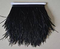 Перья страуса на ленте. Цвет Черный. Перо 9-15см. Цена за 0,5м.