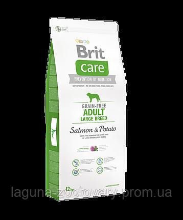 Brit Care GF Adult Large Breed Salmon & Potato 12 kg (д/собак весом от 25 кг)/ доставка, фото 2