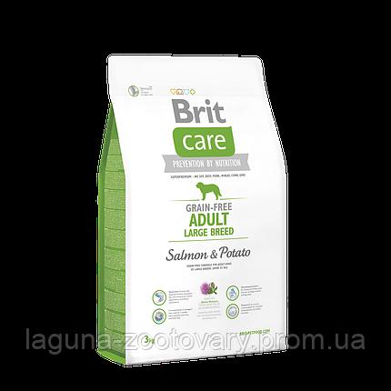 Brit Care GF Adult Large Breed Salmon & Potato 3 kg (д/собак весом от 25 кг), фото 2