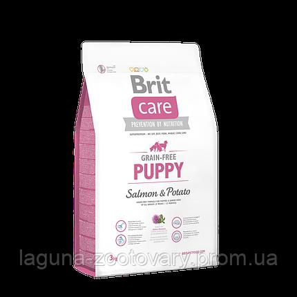 Brit Care GF Puppy Salmon & Potato 3 kg (д/щенков), фото 2