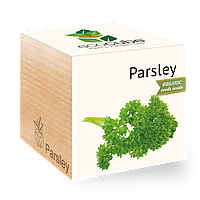 Экокуб Петрушка Parsley