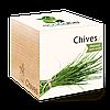Экокуб Зелёный лук Chives