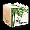 Экокуб Гигантский бамбук Giant Bamboo
