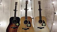 Огляд акустичних гітар Ibanez Artwood Vintage Thermo Aged
