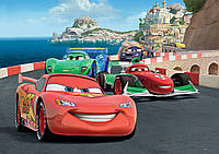 Купить 3D фотообои под заказ на стену Cars Disney : Гонка CN320