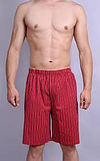 Мужская пижама  (футболка + шорты.), фото 2