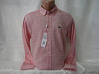 Мужская рубашка с длинным рукавом Lacoste