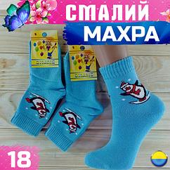 Махровые носки детские СМАЛИЙ Украина размер 18 голубой с пингвином НДЗ-0755