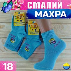 Носки детские махровые СМАЛИЙ Украина размер 16 голубые с девочкой  НДЗ-0744