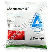 Фунгицид Мерпан ВГ 1 кг