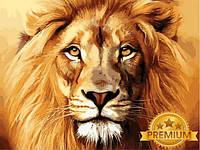 Картины по номерам 40×50 см. Babylon Premium Лев, фото 1