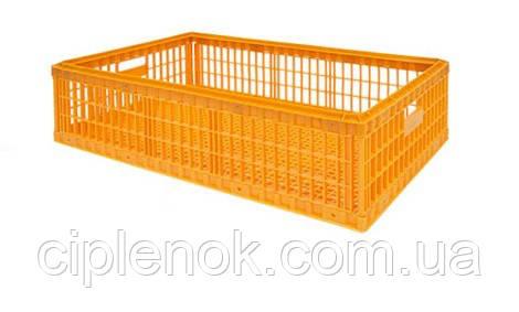 Ящик для перевозки птицы Piedmont (без крышки)