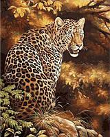 Картины по номерам 40×50 см. Леопард, фото 1