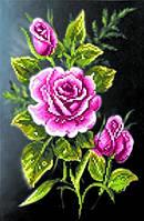 Набор для вышивки бисером Роза в ночи МП 30/Б