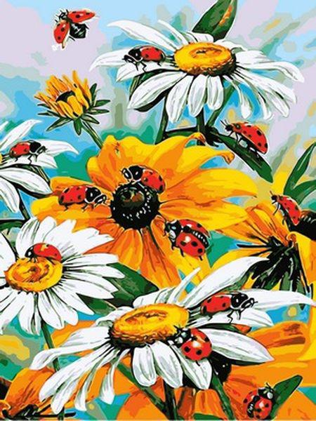 Картины по номерам 30×40 см. Божьи коровки на цветниках