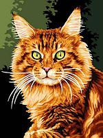 Картины по номерам 30×40 см. Рыжий кот , фото 1