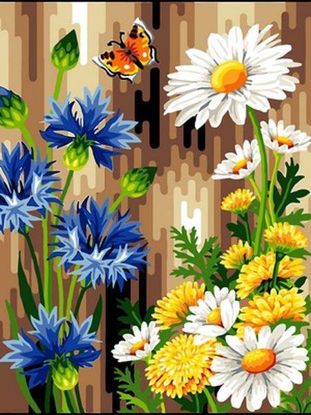 Картины по номерам 30×40 см. Васильки и ромашки