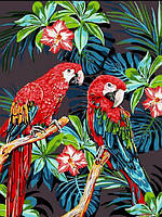 Картины по номерам 30×40 см. Попугаи Ара, фото 1