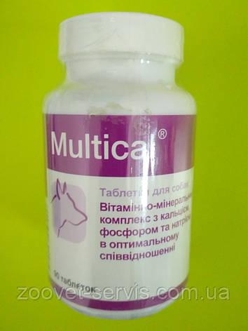 Вітамінно-мінеральний комплекс для дорослих собак всіх порід Multical – Мультикаль, 90 табл., фото 2