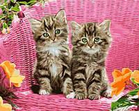 Картины по номерам 40×50 см. Котята на стуле, фото 1