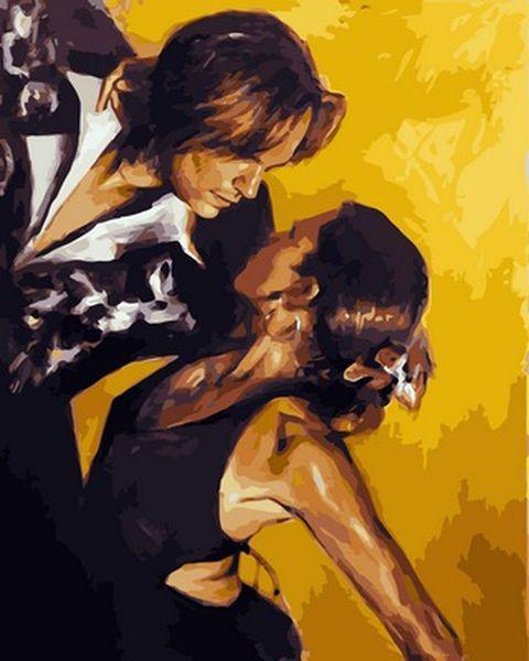 Картины по номерам 40×50 см. Танго Художник Тони Чоу